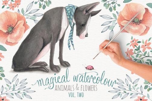 Magical_watercolour_v2-01