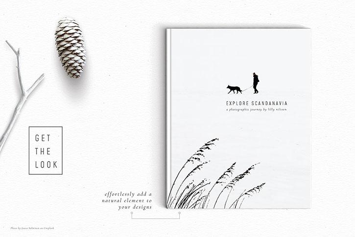 Example_designs